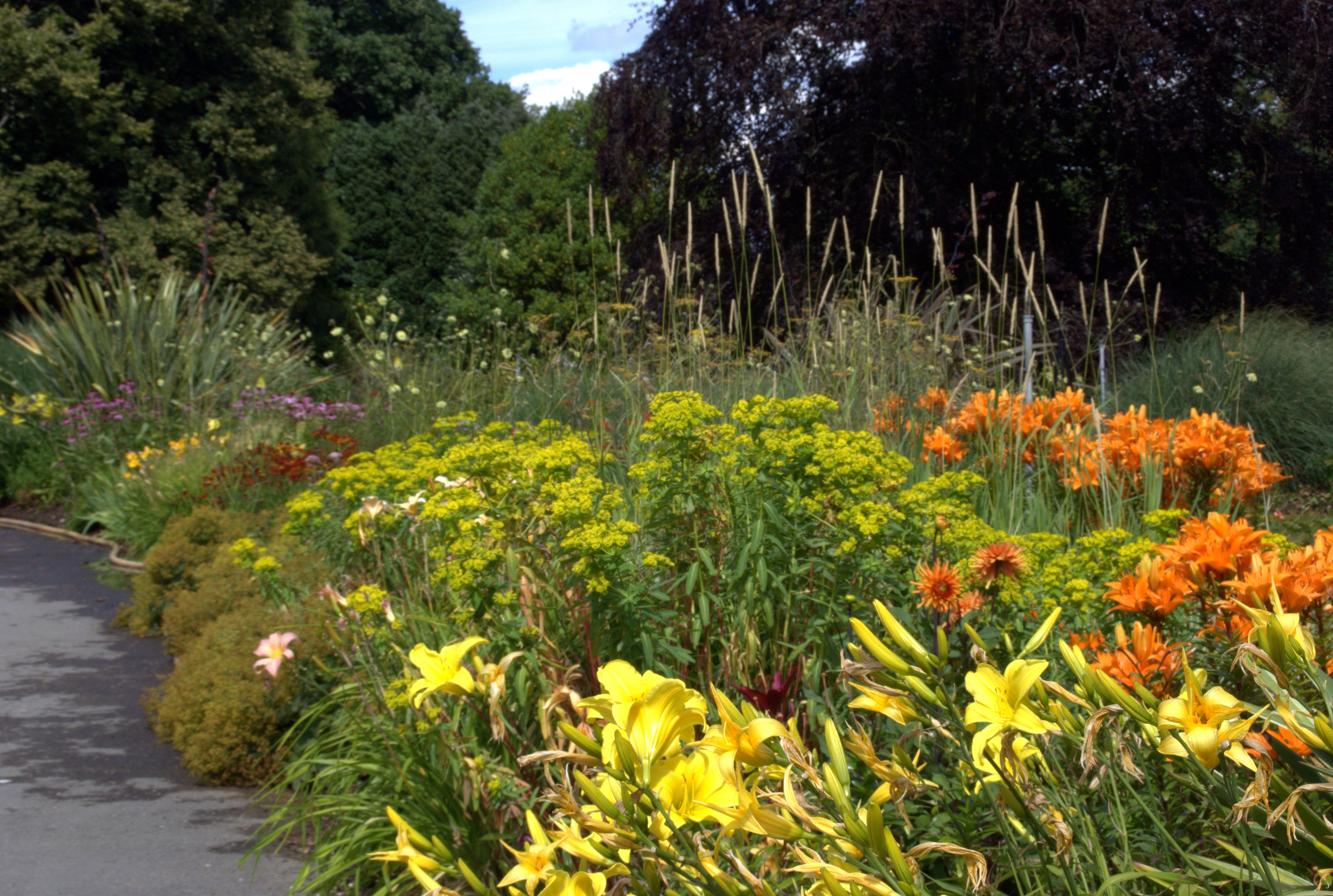 Rumbold ayers landscape and garden design in wiltshire for Herbaceous border design examples