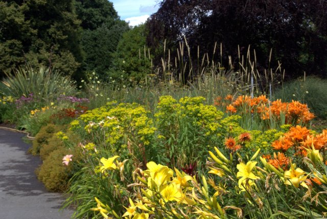 Exbury herbaceous border